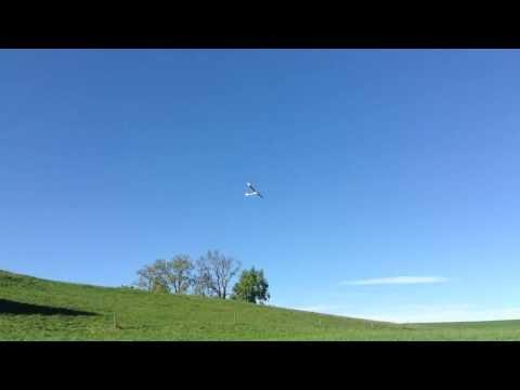 RC glider 1st flight / Kleiner Uhu 1. Flug