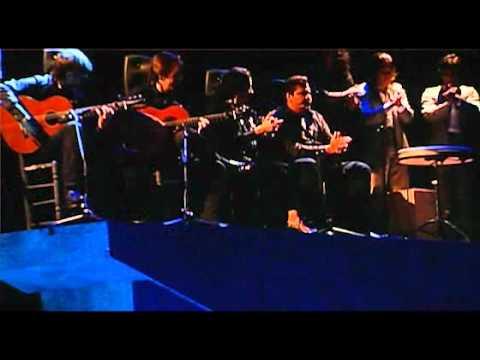 Arte Flamenco 2012: c'est parti!