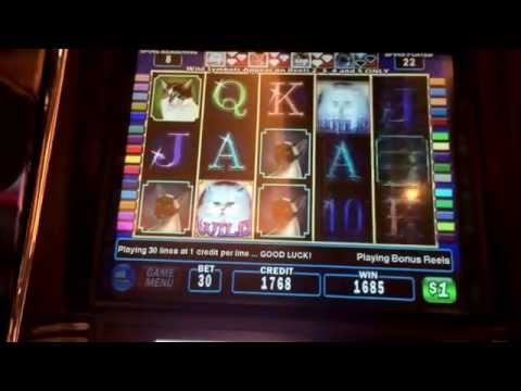 Kitty Glitter BIGGEST HANDPAY ON YOUTUBE $30 bet huge bonus win hi