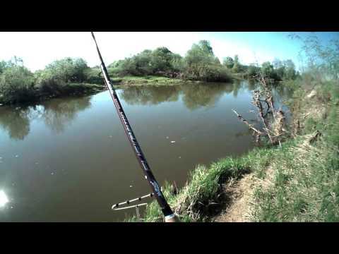 рыбалка в подмосковье на реке шерна