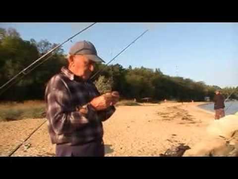 сезоны рыбалки в керчи