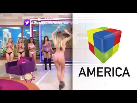 70 años de la bikini: el desfile hot de las chicas de Gran Hermano