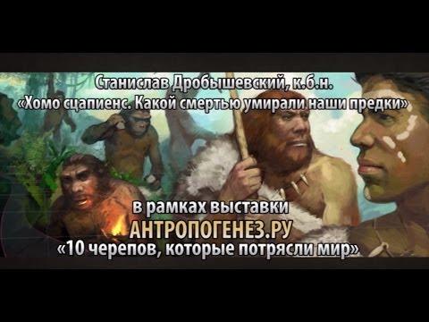 Станислав Дробышевский — Хомо сцапиенс. Какой смертью умирали наши предки
