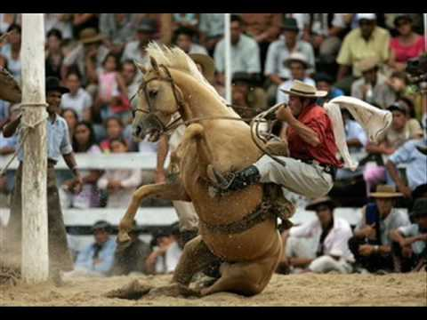 bad horse falls