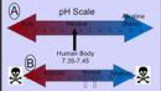 Clinical Application of Blood Gases, Part II: pH