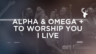 Alpha & Omega + To Worship You I Live - Alton Eugene | Bethel Worship