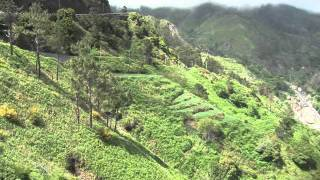Introducing Madeira Islands