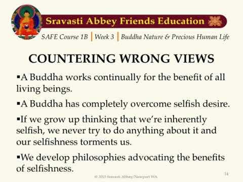 SAFE 1B Week 3 Buddha Nature and Precious Human Life
