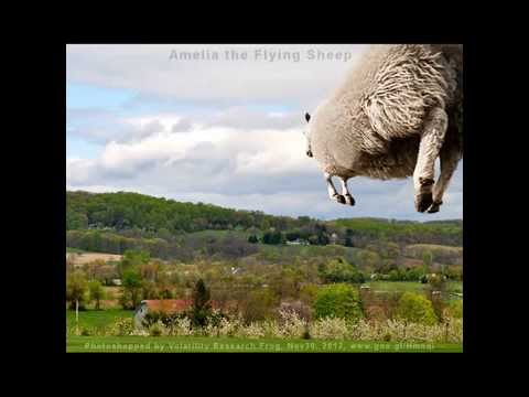 Flying Camels, Giraffes, Elephants, Cows, Dogs, Goats and Sheep HD #3