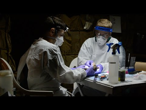 New Method Developed to Detect Ebola Virus   WCS
