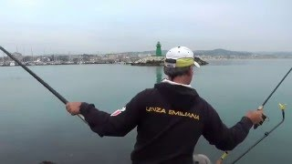 tutorial su come pescare i cefali a method e le orate o mormore a feeder fishing