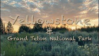 Yellowstone & Grand Teton - Cinematic Travel Video