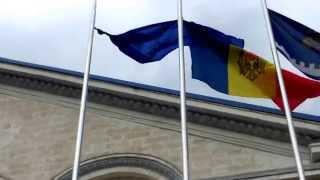 La Serviciul vamal doar drapelul instituției se ține bine!
