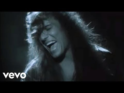 Steelheart - She's Gone video