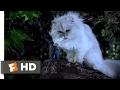 Stuart Little (1999)   You Saved Me? Scene (9/10)   Movieclips