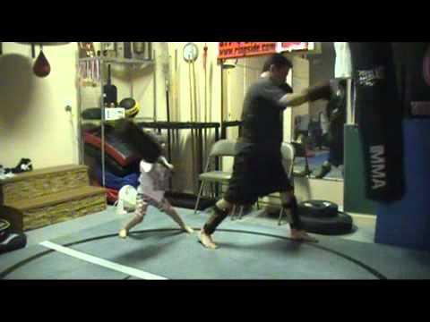 The MMA Coach