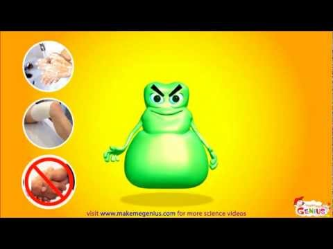 Bacteria for Kids - Animation Video