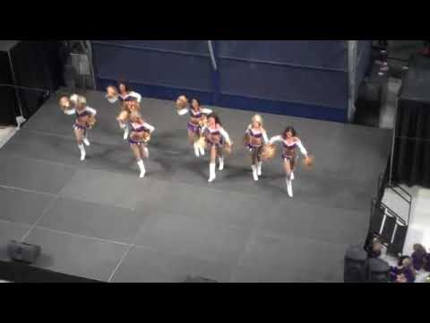 Minnesota Vikings Cheerleaders at Mall of America Video