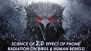 Science of 2.0 movie: Is mobile phone radiation harmful for birds & humans? How to check your mobile