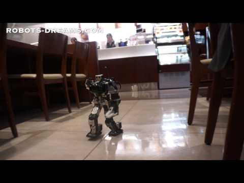 Thunderbolt Robot Unique Walking Gait