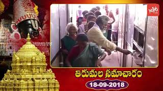 తిరుమల సమాచారం | Tirumala Samcharam Today | Tirumala Tirupati Samacharam Today | #TTD News