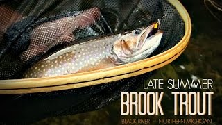 Brook Trout Fishing the Black River in Northern Michigan