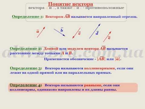 Видеоурок Векторы - видео