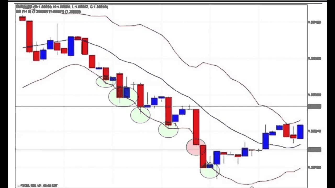 Online forex trading nz