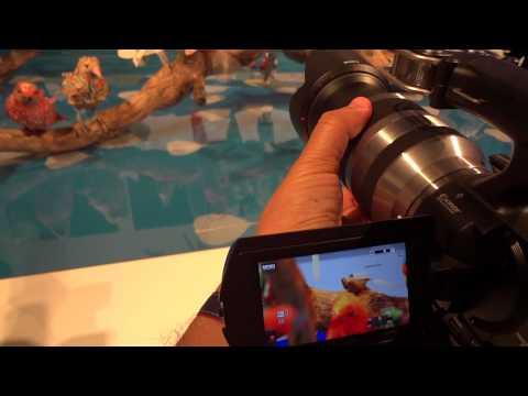 Filmadoras com trocas de lente