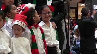 ¡Llegó la magia! Así fue el encendido del árbol de navidad en el Sambil Caracas