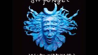 Download Lagu Shpongle - Are You Shpongled [Full album] Gratis STAFABAND
