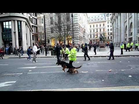 G20 protest London 2009 - Police dog bites man