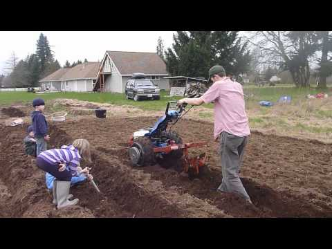 BCS 853 Furrowing for potatoes with toolbar mounted furrower