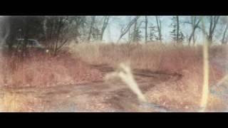 Watch Tupelo Honey Not Alone video