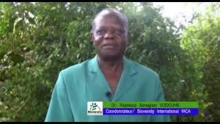 L'importance des legumes locaux - The importance of local vegetables