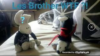 LES BROTHER WTF ?! E06 : L'ARMÉE DES MUGULOS CONTRE DIPSI SHREK.