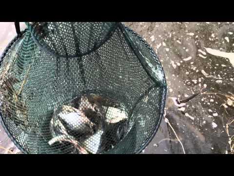 рыбалка на канале сугрэс