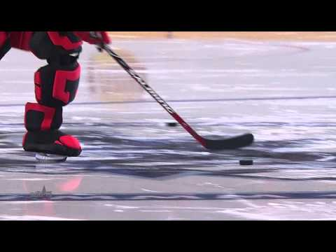 Матч Звезд 2015: Маскоты бьют буллиты / KHL All Star Game 2015: Mascot Shootout Contest
