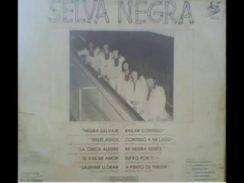 Grupo selva negra .la chica alegre (1983)