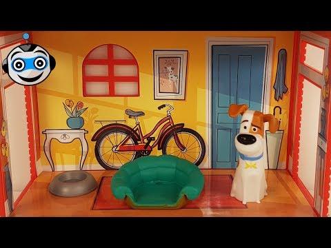 Mini Apartamentos de Mascotas para Unir y Apilar y Sobres Sorpresas