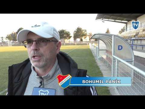 Příprava: Bohumil Páník hodnotí zápas s Mattersburgem (1:1)