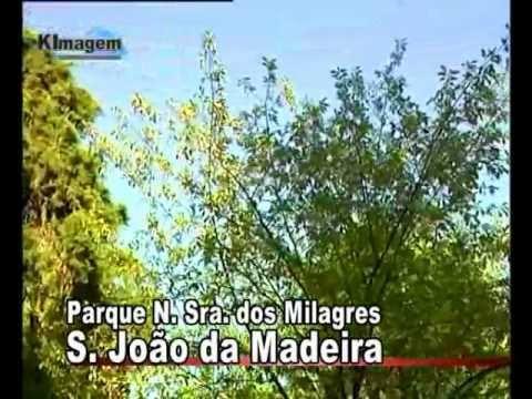 Parque de n. s�. dos milagres -  s�o jo�o da madeira