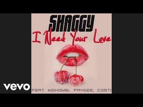 Shaggy - I Need Your Love