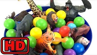 Kid -Kids -ZOO Animals Names for Children Learning Colors Educational Toys Ball Pit Show for Kids