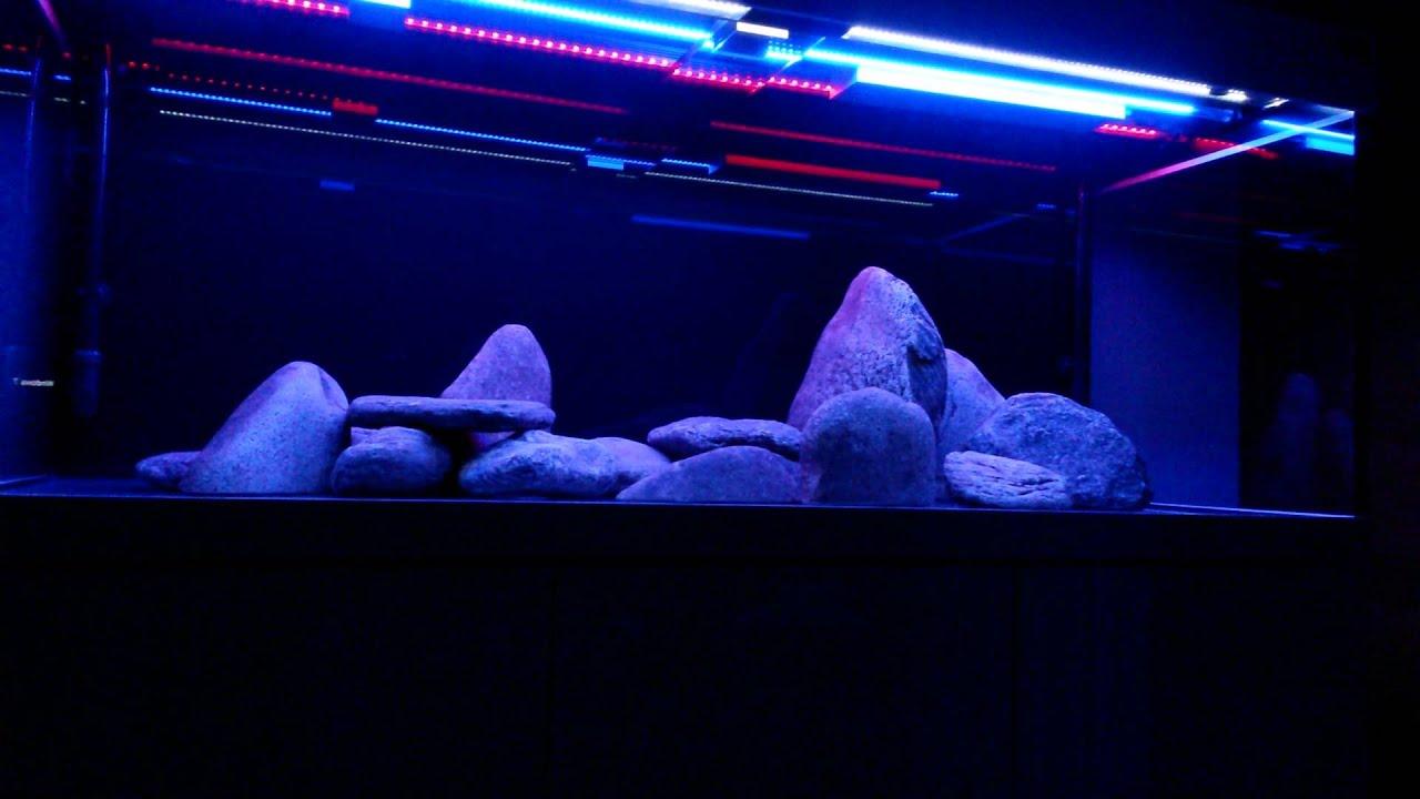 aquarium led beleuchtung farao evolution youtube. Black Bedroom Furniture Sets. Home Design Ideas