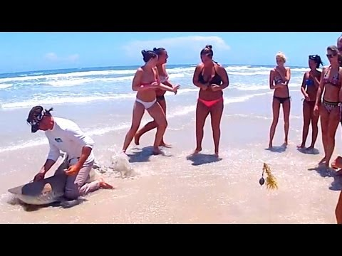 Nice Blacktip Shark Fishing Daytona Beach Florida & GIRLS!