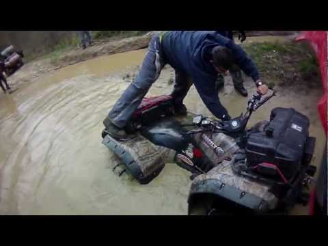 The Modfather Gets Muddy