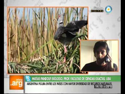 Vivo en Arg - Argentina y sus recursos naturales - 02-09-13