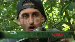 download lagu Cari Kepiting Di Hutan Mangrove  Travel Addict Eps. gratis