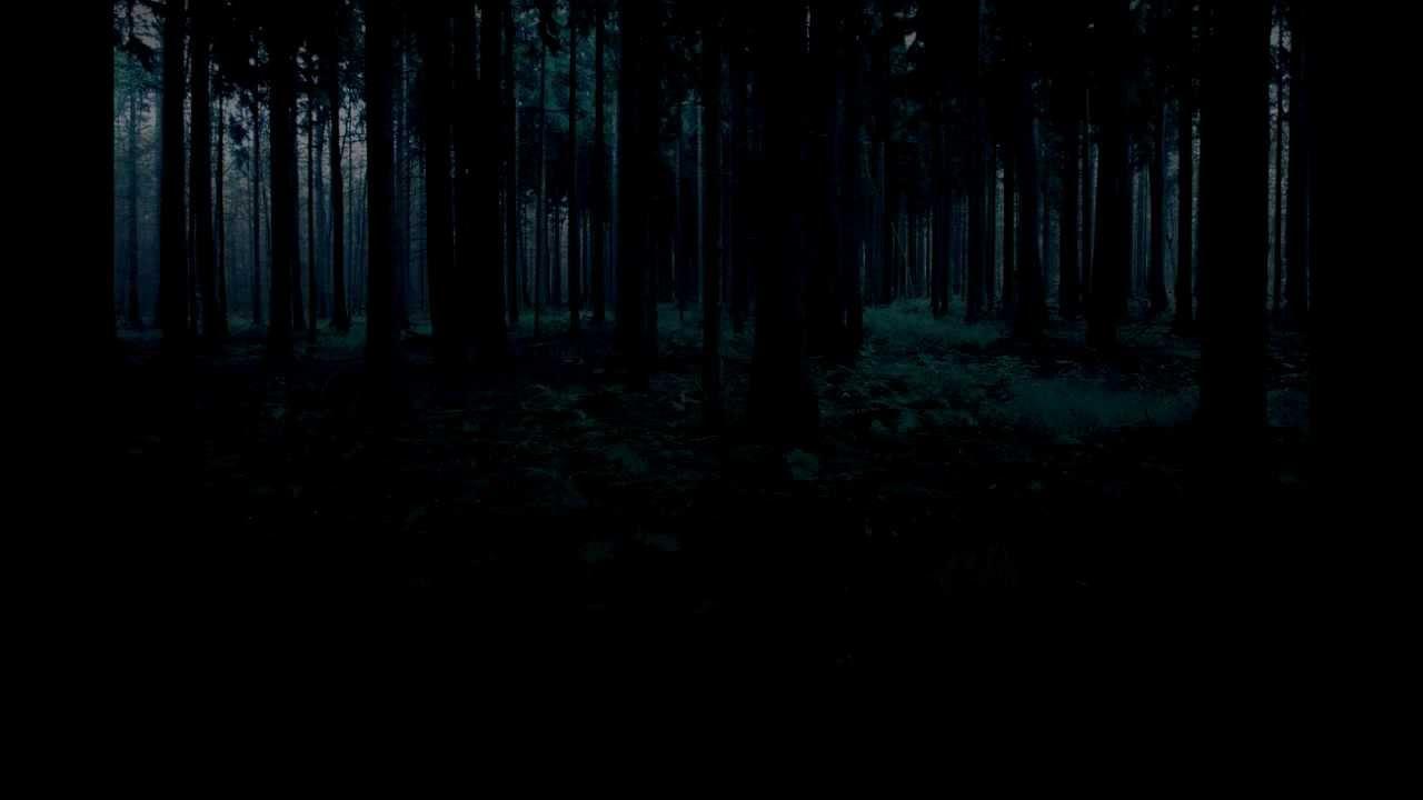 Soundscape Creepy Woods